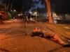 Gezi parkında polisin müdahalesi sonucu yaralanan direnişçi