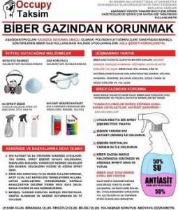 bibergazina-karsi
