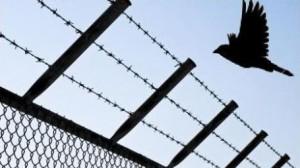 cezaevi chp gezi tutuklu tutsak