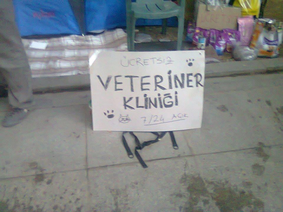 gezi-veterinerleri-klinik
