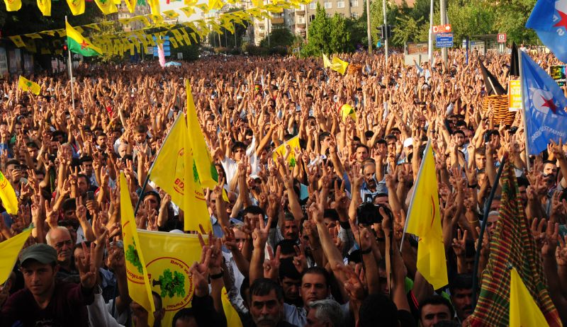 amed-anf3