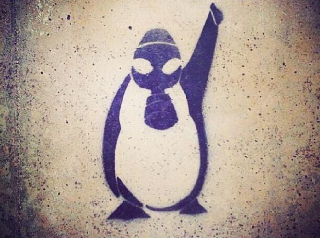 penguen-yayinlamayanlara-suc-duyurusu-1